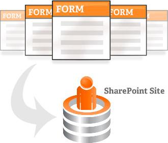 BCi-share